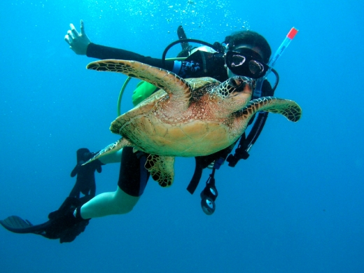 Diver with Sea Turtle